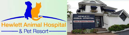 Hewlett Animal Hospital